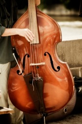 A musician playing a bull fiddle or double bass.