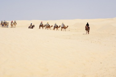 A camel caravan in the desert.