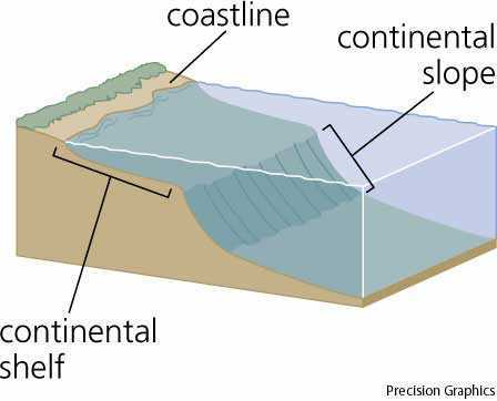 continental slope and continental shelf squeek 39 s school work  : continental shelf diagram - findchart.co