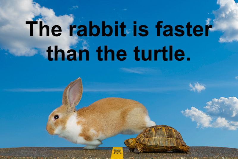 the rabbit is faster than the turtle