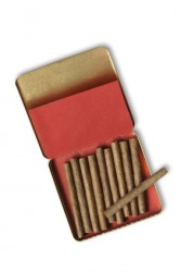 Cigarillos in a case.