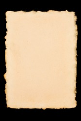 A piece of paper with a deckle edge.